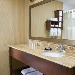 Bathroom of the hotels at the Hampton Inn Youngstown Boardman/Poland