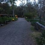Path to our cabin at dusk.