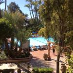 The hotel pool and garden
