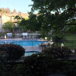 A view to the pool from my....poolside room.