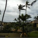 This is the view from the lanai.
