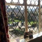 View from our window over the beautiful gardens and patio area