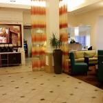 Hilton Garden Inn Denver South/Meridian Foto