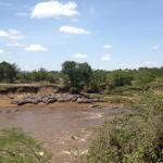 View of the Mara river and its resident hippos from the restaurant