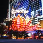 External Shot of Flamingo Hotel at Night #2
