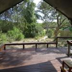 Photo of Simbavati River Lodge