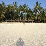 Photo de Pinewood Beach Resort & Spa
