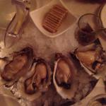 Oesters��