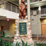 Foto van Embassy Suites by Hilton Syracuse