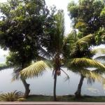 Foto di Waterscapes KTDC Backwater Resort