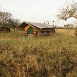 Serengeti Wilderness Camp의 사진