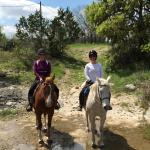 Hill Country Equestrian Lodge의 사진