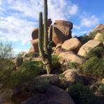The Boulders, A Waldorf Astoria Resort Foto