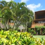 View of Hotel Molokai garden