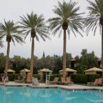 The palm trees through out the resort are picture perfect.