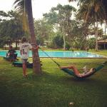 Lounging around in hammocks all day