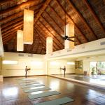 Private Yoga and Pilates Daily