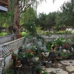 Foto de Serenity Gardens Bed and Breakfast
