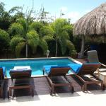 Poolside @ Hibiscus Beach House- View from poolview room