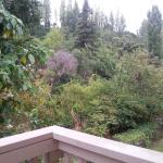 View from rear balcony