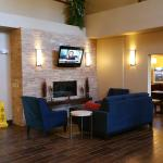 Foto de Comfort Inn & Suites. Grafton-Milwaukee