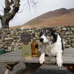 Foto di Wayside Guest Accommodation and Whisky Barn