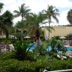 Φωτογραφία: Holiday Inn Coral Gables - University