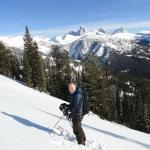 Backside of Targhee Wilderness Skiing