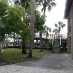 Foto di The Conch House Marina Resort