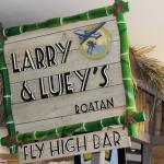 Larry and Lueys Fly High Bar