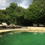 Foto de andBeyond Phinda Forest Lodge