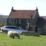 This is the cottage itself from the front, in the village