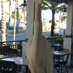 George The Egret down the street at Post, Greek Family Restaruant.