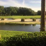 Foto de Marriott's Sabal Palms