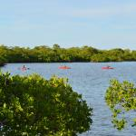 Kayaking right off the island
