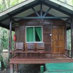 Φωτογραφία: Nature Lodge Kinabatangan