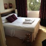 Room 3 - dog friendly hotel