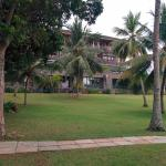 Lawns in the resort