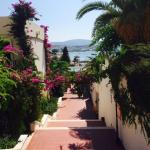 Photo de WOW Resort Bodrum