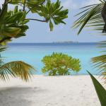 Фотография Filitheyo Island Resort
