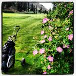 Amazing Golf Courses Near By