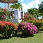 The colourful, immaculately kept gardens