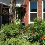 Spring at Cabbageville B&B!