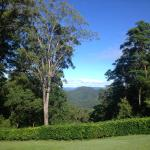 Crisp Views from your deck at Mapleton Falls Accommodation