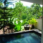 The private pool under the Lania room