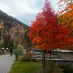 Fall colours at hot springs