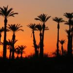 Borrego Springs Resort & Spa Foto