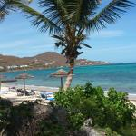 Divi Carina Bay All Inclusive Beach Resort의 사진