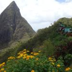 Ladera's Rooms Along the Ridge
