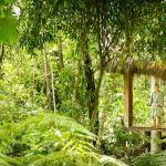 Spa and Yoga pavilion in the forest